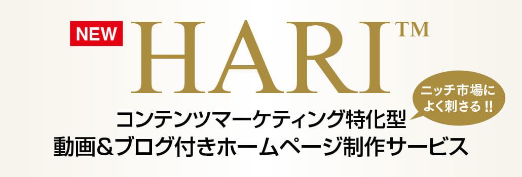 「HARI」(ハリ)コンテンツマーケティング特化型 動画&ブログ付きホームページ【ニッチ市場によく刺さる!!】